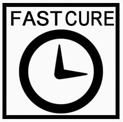 fast cure vinylester
